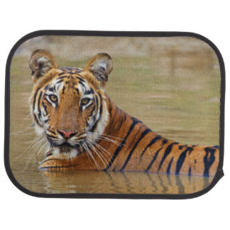 Tapis De Sol Tigre de Bengale royal au point d'eau