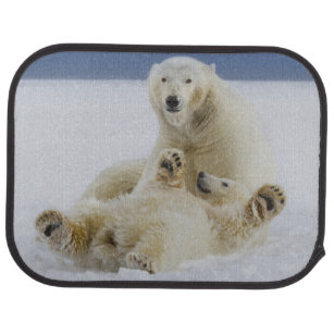 tapis de sol ours blanc pour voiture. Black Bedroom Furniture Sets. Home Design Ideas