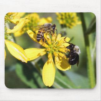 Tapis De Souris Abeille d'extraction et abeille de miel sur le