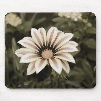Tapis De Souris agedprupleyellow rayé pourpre de fleur