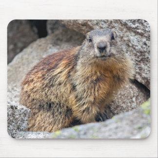 Tapis de souris alpin de Marmot