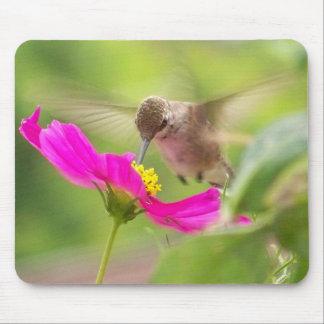 Tapis De Souris Animal de faune d'oiseau de colibri floral