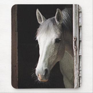 Tapis De Souris Animaux gris Mousepad de cheval de jument