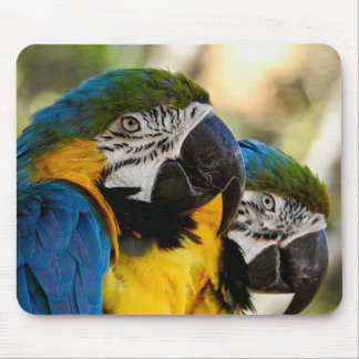 Tapis De Souris Ara bleu et jaune de série animale de Mousepad -