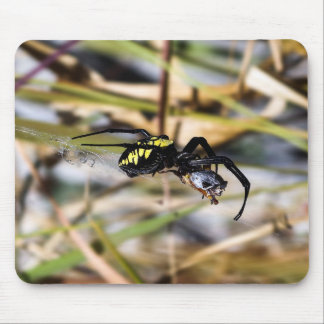Tapis De Souris Araignée de jardin noire et jaune d'Argiope