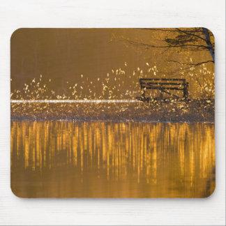 Tapis De Souris Banc isolé par le lac dans le mousepad léger d'or