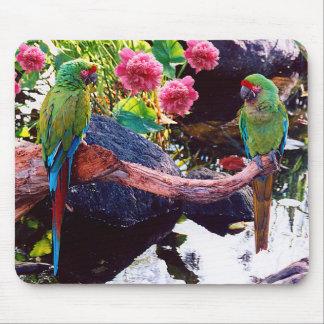Tapis De Souris Beaux perroquets avec les fleurs roses -