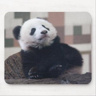 Tapis De Souris Bébé doux de panda géant