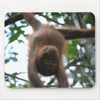 Tapis De Souris Bébé mignon : Animaux sauvages de jungle