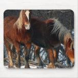 Tapis de souris belge de chevaux de trait