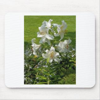 Tapis De Souris Belle copie de fleur