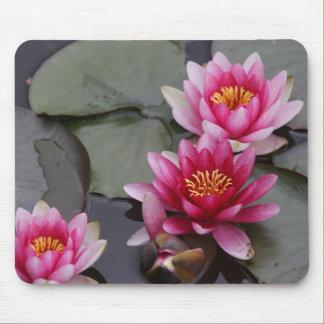 Tapis De Souris Belles fleurs de lac sur la protection de mause