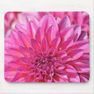 Tapis De Souris Belles fleurs roses de fleur de dahlia