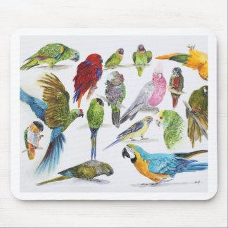 Tapis De Souris Cadeau pour des amants de perroquet partout