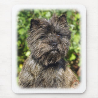 Tapis De Souris Cairn Terrier 9W048D-142_2