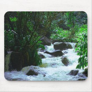 Tapis De Souris Cascade hawaïenne tropicale
