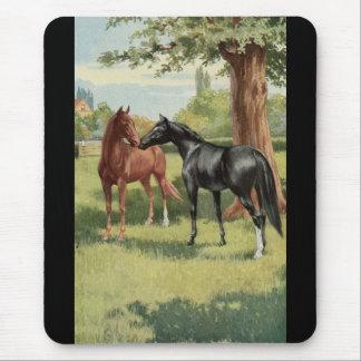 Tapis De Souris Cavalier vintage d'étalon de jument de cheval