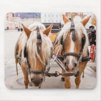 Tapis De Souris Chariot | Autriche de cheval
