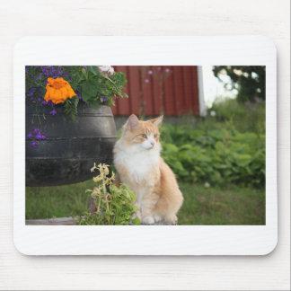 Tapis De Souris chat