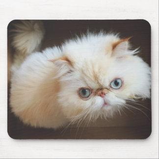 Tapis De Souris Chat dans une boîte