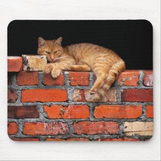 Tapis De Souris Chat sur le mur de briques