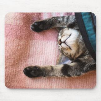 Tapis De Souris Chaton de sommeiller