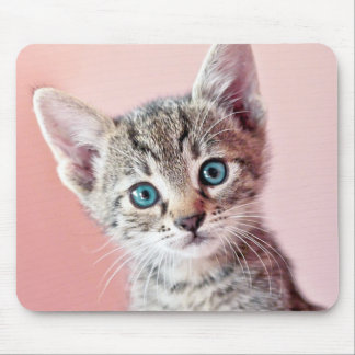 Tapis De Souris Chaton mignon avec les yeux bleus