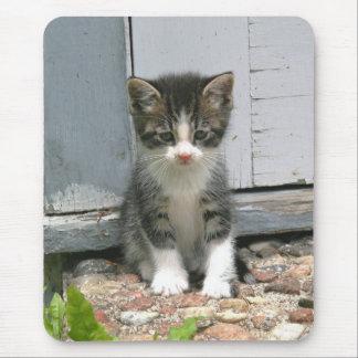 Tapis De Souris Chaton triste seul Mousepad de chat de Gershwin