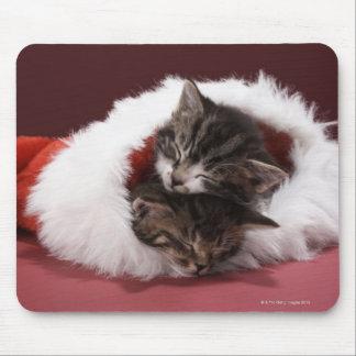 Tapis De Souris Chatons endormis ensemble dans le casquette de