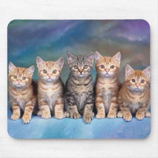 tapis de souris chats