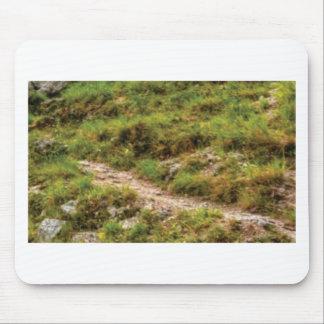 Tapis De Souris chemin herbeux