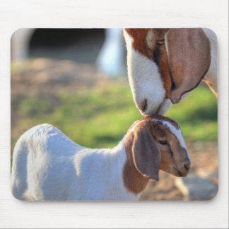 Tapis De Souris Chèvre de mère embrassant son bébé sur la tête