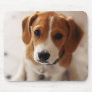 Tapis De Souris Chiot 2 de beagle