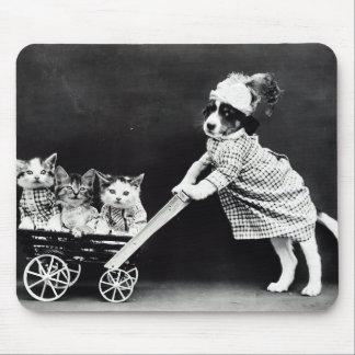 Tapis De Souris Chiot avec trois chatons dans un chariot