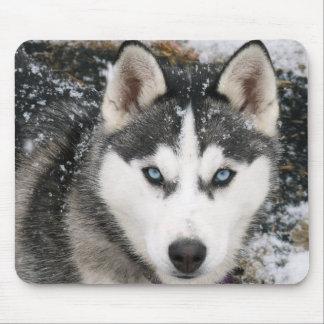 Tapis De Souris Chiot de chien de traîneau sibérien dans la neige
