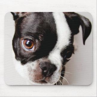 Tapis De Souris Chiot d'Edison Boston Terrier