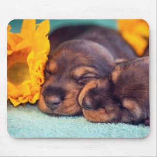 Tapis De Souris Chiots adorables de sommeil Doxen