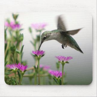 Tapis De Souris Colibri