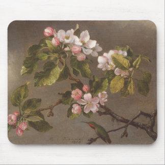 Tapis De Souris Colibri et fleurs d'Apple