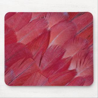Tapis De Souris Conception de plume de perroquet de gris africain