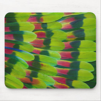 Tapis De Souris Conception de plume de vert de perroquet d'Amazone