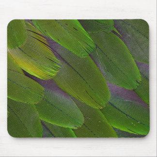 Tapis De Souris Conception verte de plume de perroquet de caïque