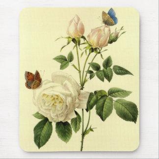 Tapis De Souris Copie de Redoute : Le 'Bengale Hymanee rose