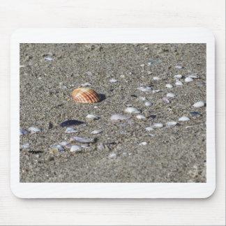 Tapis De Souris Coquillages sur le sable. Arrière - plan de plage