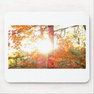 Tapis De Souris Couleurs de rayon de soleil en automne sur l'île