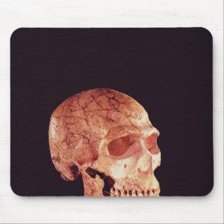 Tapis De Souris Crâne de Néanderthal, découvert sur Mt Carmel