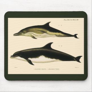 Tapis De Souris Dauphins vintages, animaux marins et mammifères