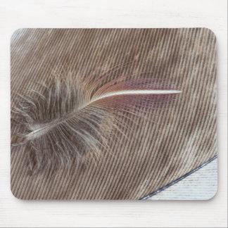 Tapis De Souris De Brown de plume toujours la vie pâle