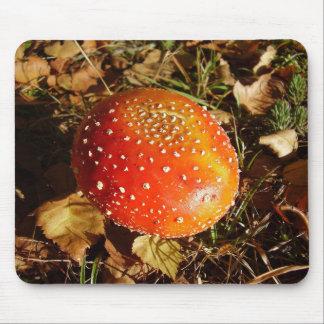 Tapis de souris de champignon d'agaric de mouche