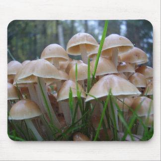 Tapis de souris de champignon d'inclinata de